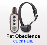 Pet Obedience